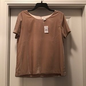 J crew oatmeal colored velvet party top